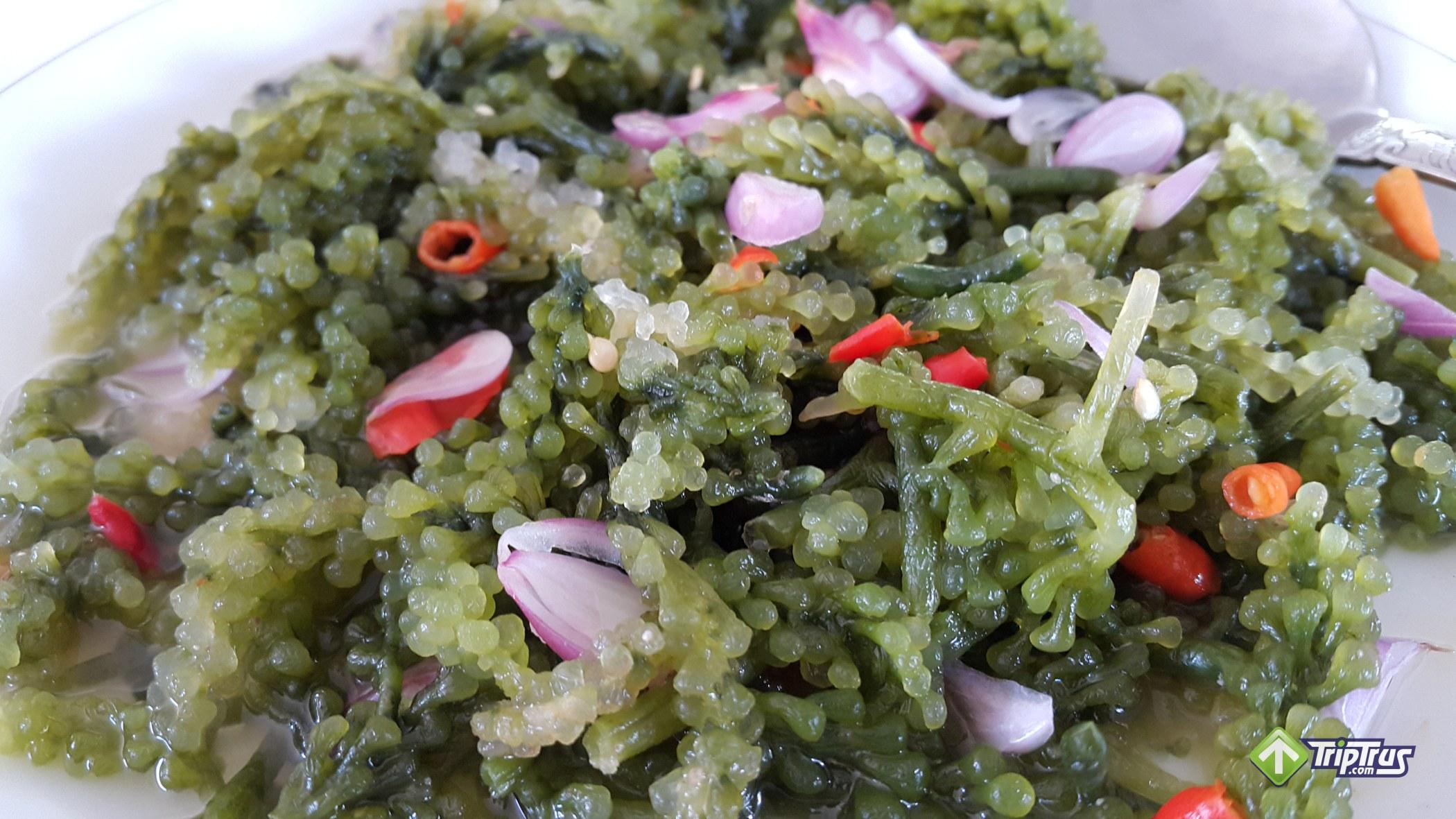 Lad, kuliner khas Kei dari rumput laut