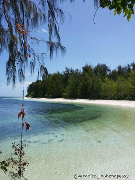 Pulau Ngav